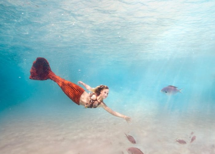 underwater photography Noustha