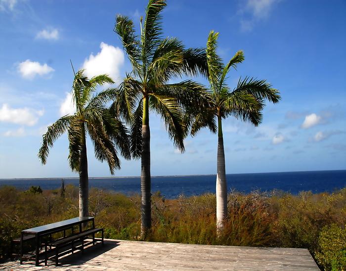 Bonaire vacation homes